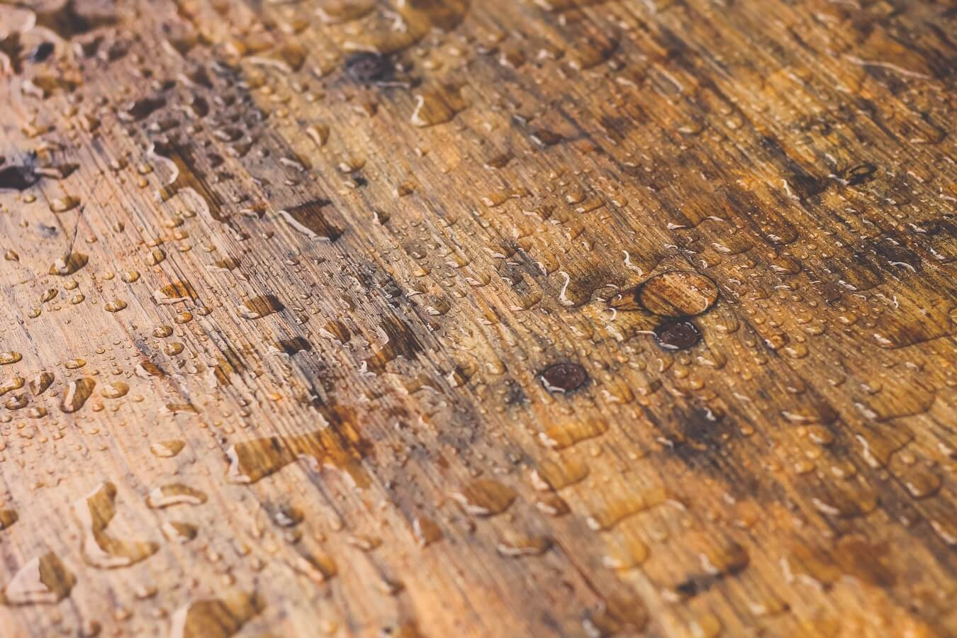Best Moisture Barriers For Hardwood